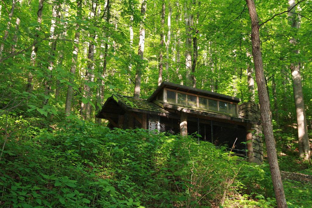 Stone Mountain Park Stone Mountain Ga >> AT in NC - Low Gap to Davenport Gap